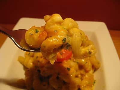 Dining With the Doc: Masala Mac & Cheese