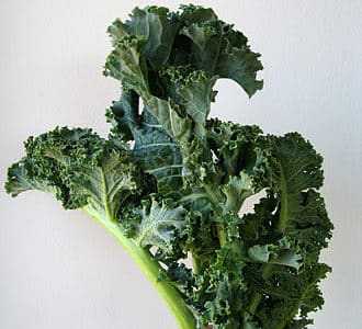 Ingredient 911: Kale, a Superfood